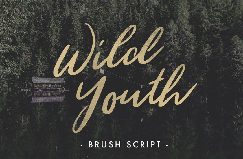 Wild Youth - Top Free Font